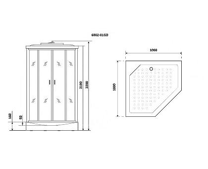 Душевая кабина Niagara Premium NG-6002-01GD 100x100